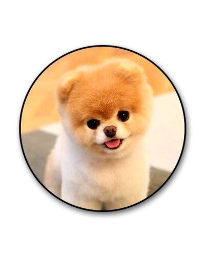 Cutest Puppy Popgrip